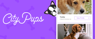 CityPups - Help users find the perfect dog to adopt.